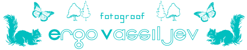 Ergo Vassiljev ➢ fotograaf